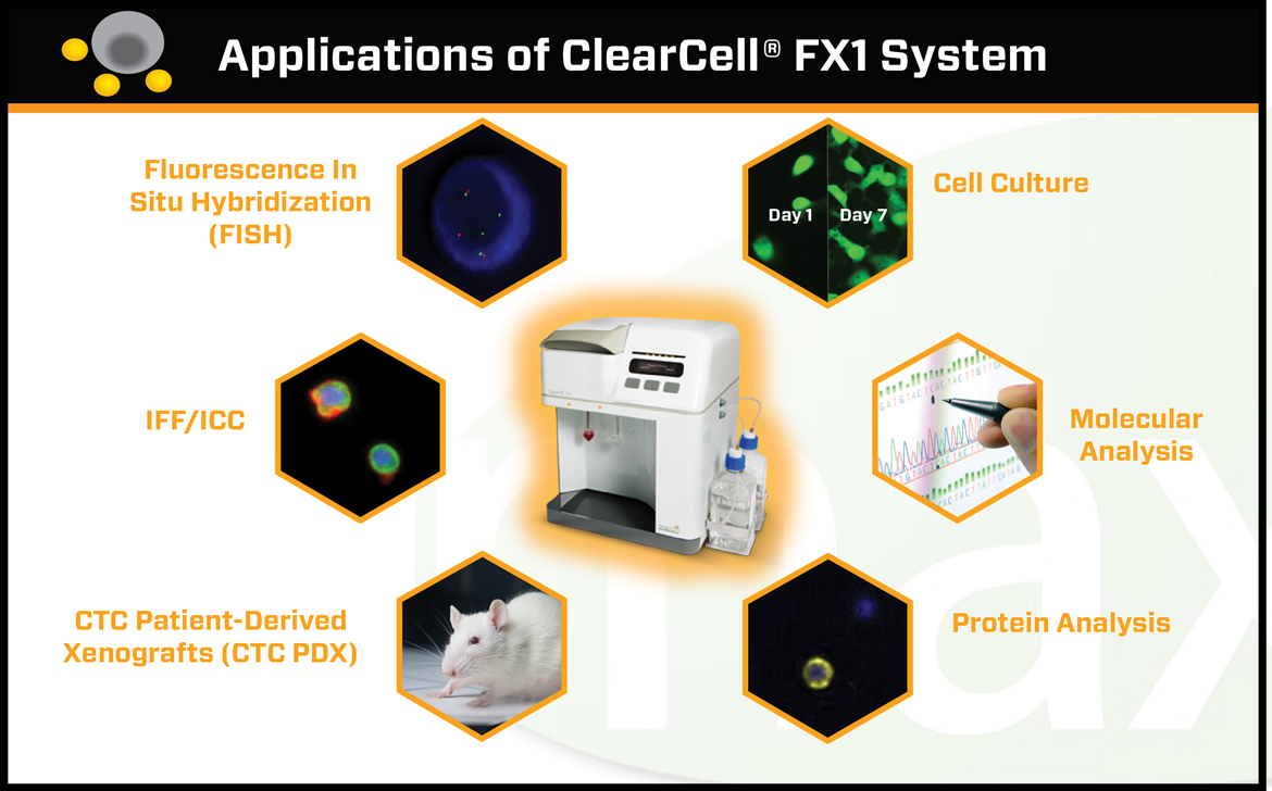 clearbridge clearcell fx1