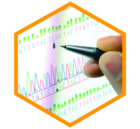 clearcell molecular analysis